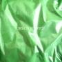 Пигмент перламутр(мика)Зеленый 10 г.