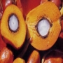 Масло пальмовое рафинированное 100 гр.