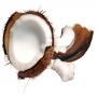 Отдушка Спелый кокос 30 мл