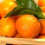Отдушка Сладкий мандарин 15 мл