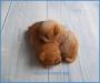 Силиконовая форма серия Сон Спящие щенки 3Д