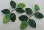 Зелень искусственная Розетка листва для розы