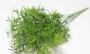 Зелень искусственная Букет аспарагус