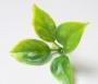 Зелень искусственная Лист розы средний